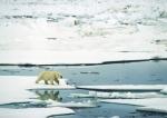 Conquering - Closing Arctic 23 lowres